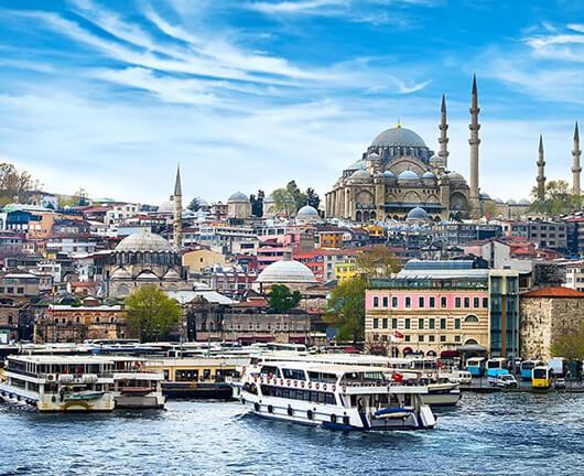 Turkey 530x432 Px